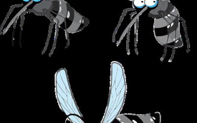 Para qué sirve el perfil de aluminio para mosquitero